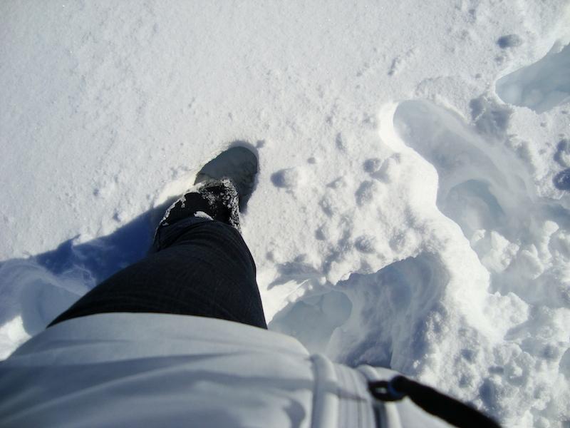 Deep snow | Pure Sweet Joy