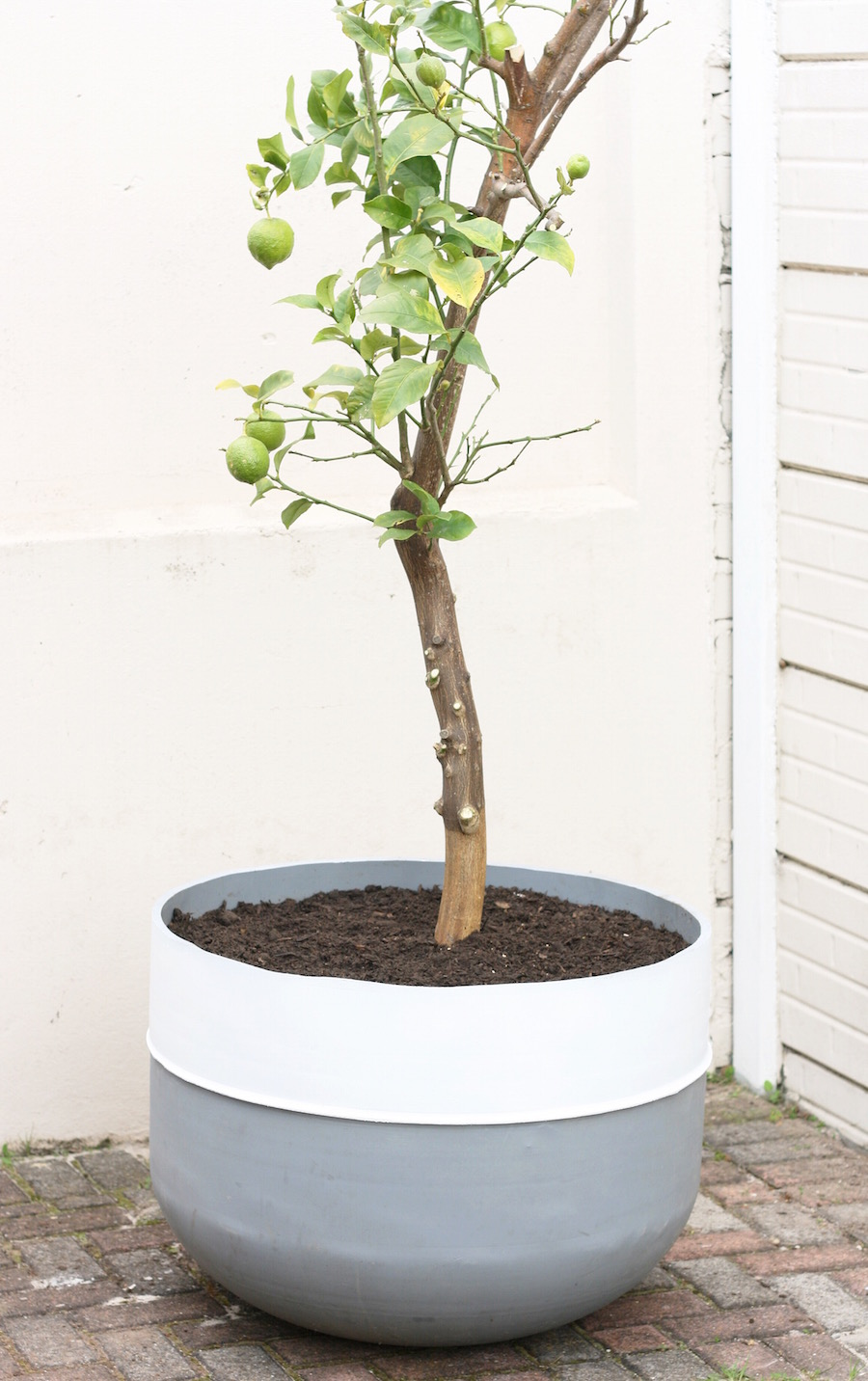 Garden Pot // DIY tutorial