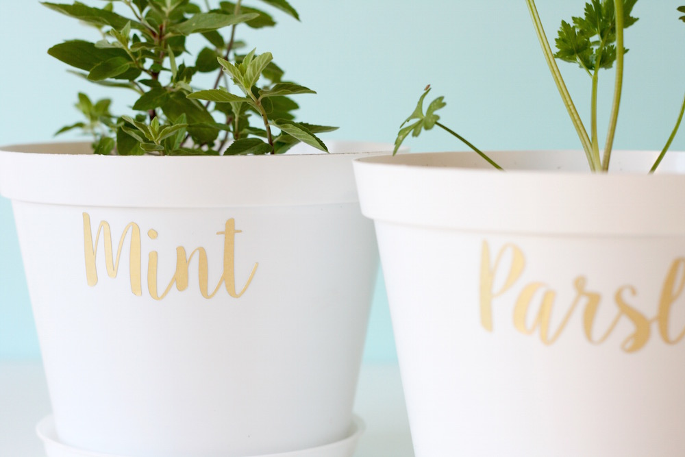 Vinyl herb pot plant labels DIY