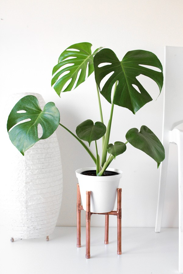 Raised Copper Pipe Pot Plant Stand-7