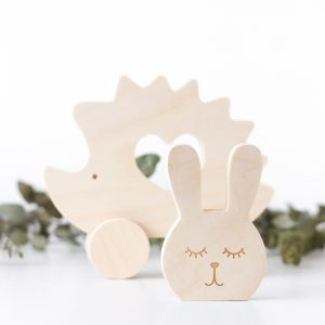 Hedgehog push toy and bunny Shelf Decor