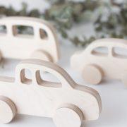 Wooden Push Toys Set