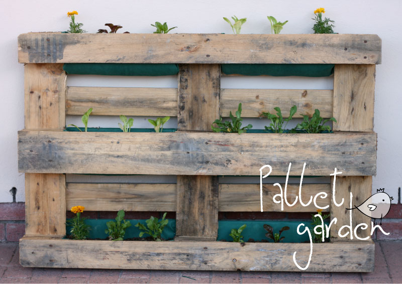 Vertical pallet garden // tutorial